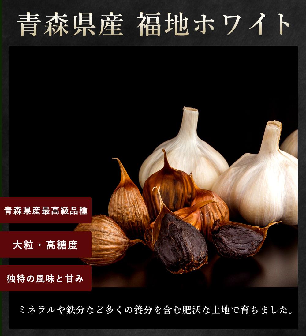 青森県産福地ホワイト