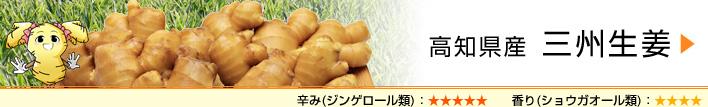 高知県産 三州生姜
