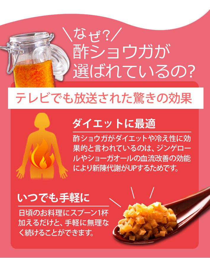 酢生姜ダイエット